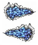 SMALL Long Pair Ripped Metal Design With Pile of BLUE Skulls Motif Vinyl Car Sticker 73x41mm